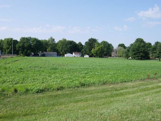 0 Johnson, POCAHONTAS, IL 62275 (#19062595) :: Holden Realty Group - RE/MAX Preferred