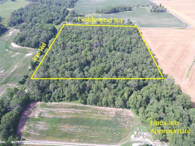 0 Goldenrod Road, COULTERVILLE, IL 62237 (#19062897) :: Holden Realty Group - RE/MAX Preferred