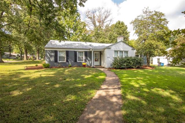 8435 Stanford Avenue, St Louis, MO 63132 (#19063850) :: Kelly Hager Group | TdD Premier Real Estate