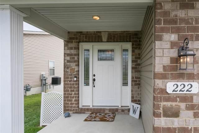 222 Wingate Boulevard, Belleville, IL 62221 (#19064030) :: Clarity Street Realty