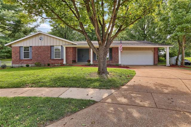 14703 Saille Court, Florissant, MO 63034 (#19064511) :: The Kathy Helbig Group