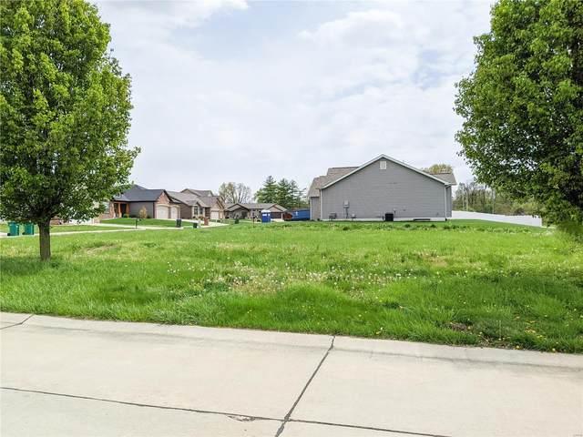 689 Vinci Drive, Caseyville, IL 62232 (#19069258) :: Mid Rivers Homes