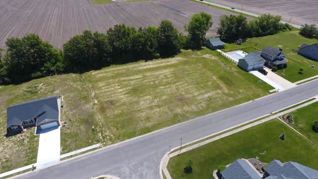 145 W Timberview Drive, STAUNTON, IL 62088 (#19069672) :: Clarity Street Realty
