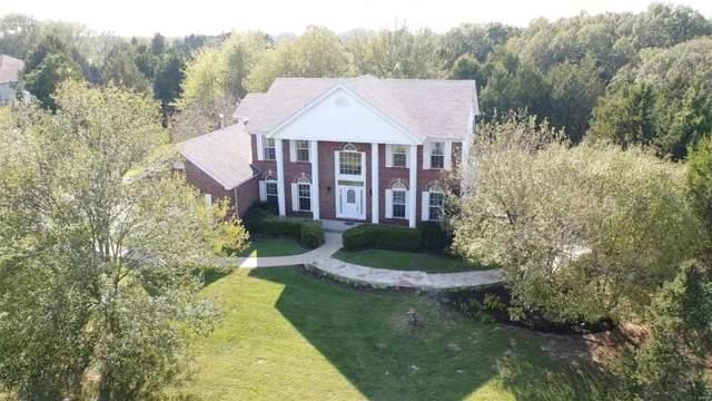 550 Cedar Lane, Sullivan, MO 63080 (#19069730) :: RE/MAX Professional Realty