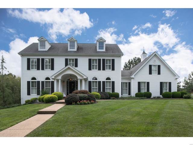 16320 Wilson Creek Court, Chesterfield, MO 63005 (#19070642) :: Realty Executives, Fort Leonard Wood LLC