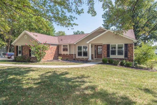 307 Willowpointe Drive, Saint Charles, MO 63304 (#19070845) :: Kelly Hager Group   TdD Premier Real Estate