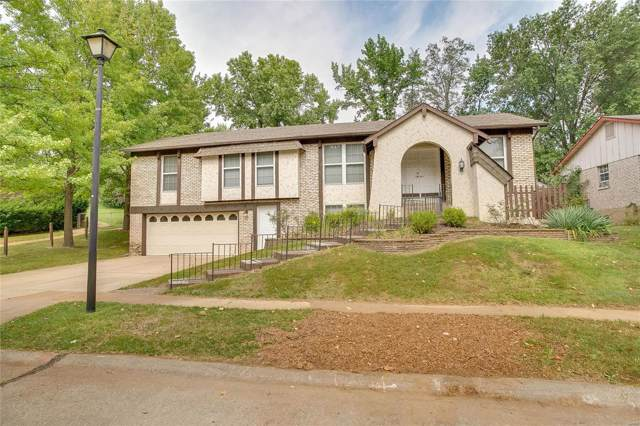 4797 Vermilion, St Louis, MO 63128 (#19071092) :: Clarity Street Realty