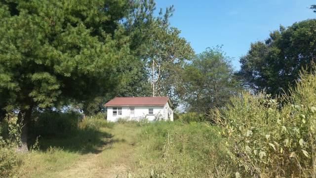 141 142E-46, Neelyville, MO 63954 (#19071518) :: Barrett Realty Group