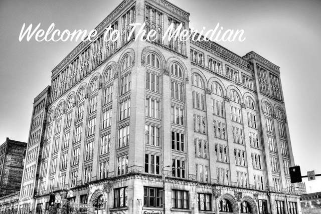 1136 Washington Avenue #300, St Louis, MO 63101 (#19071943) :: Hartmann Realtors Inc.