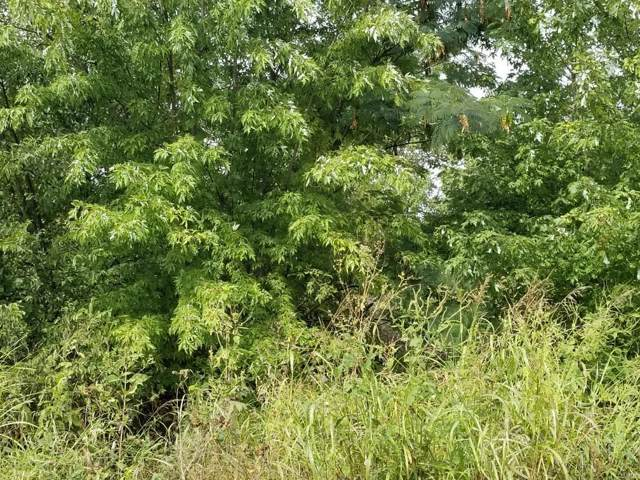 0 Hillside Drive, Unincorporated, MO 63020 (#19072043) :: Clarity Street Realty