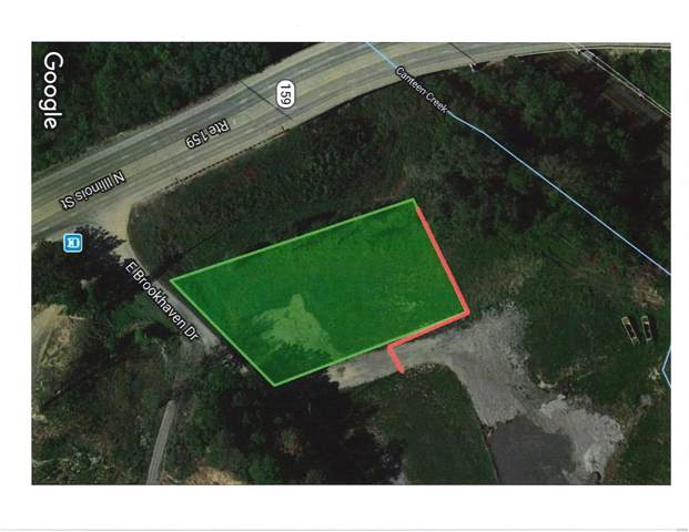 106 E Brookhaven Drive, Caseyville, IL 62232 (#19072484) :: Fusion Realty, LLC