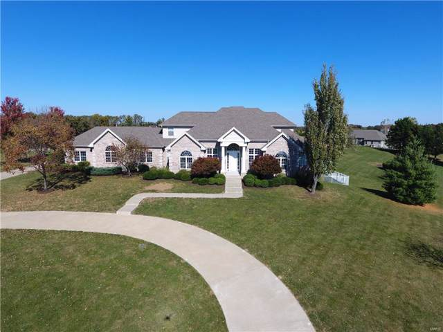 23 Raven Court, Wentzville, MO 63385 (#19072827) :: Clarity Street Realty
