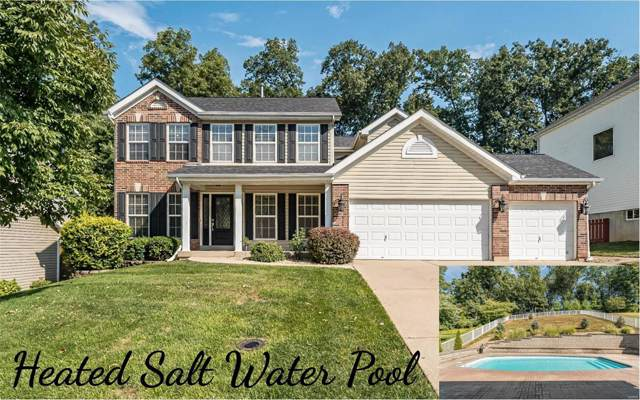 823 Crescent Springs Court, Valley Park, MO 63088 (#19073454) :: The Becky O'Neill Power Home Selling Team