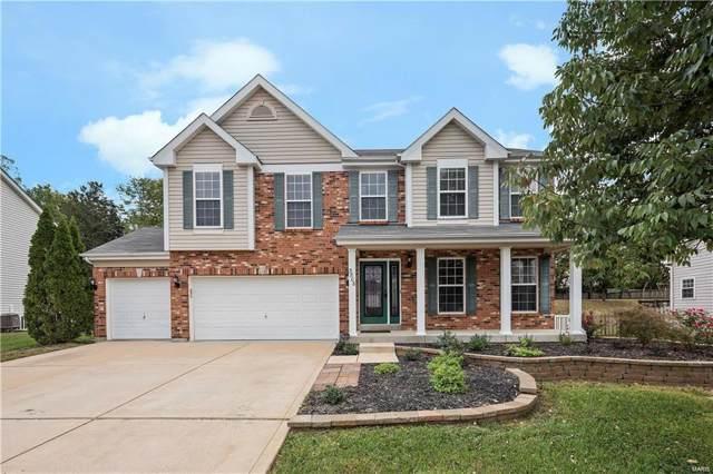 3806 Scarlet Oak Drive, House Springs, MO 63051 (#19073784) :: Peter Lu Team