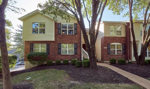 736 Woodside Trails Drive #201, Ballwin, MO 63021 (#19074229) :: RE/MAX Professional Realty