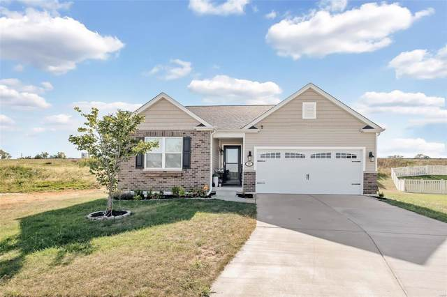 48 Birch Brook Court, O'Fallon, MO 63366 (#19075883) :: Matt Smith Real Estate Group
