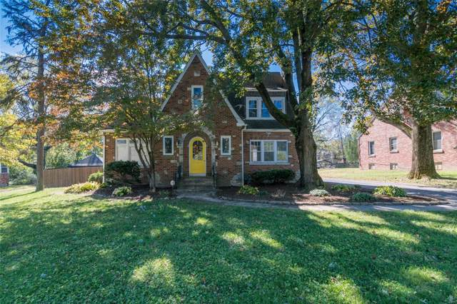 230 Julia Place, Belleville, IL 62223 (#19076168) :: Holden Realty Group - RE/MAX Preferred