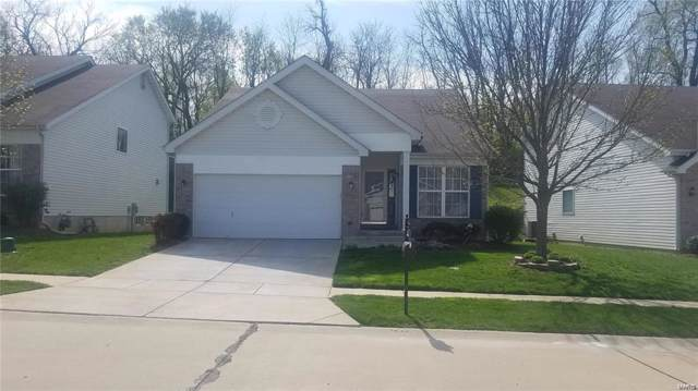 4320 Hollow Brook Court, Florissant, MO 63034 (#19076692) :: Hartmann Realtors Inc.