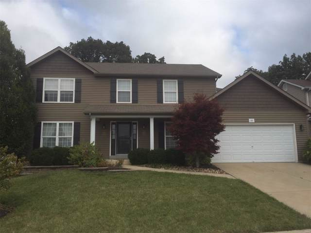 537 Great Oaks Meadow Drive, Wentzville, MO 63385 (#19076790) :: Matt Smith Real Estate Group