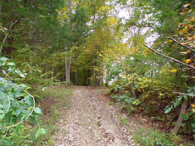 81 Acres Hwy 30, House Springs, MO 63051 (#19077260) :: The Kathy Helbig Group