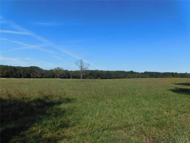 109 Smith Lane, Raymondville, MO 65555 (#19077509) :: RE/MAX Vision