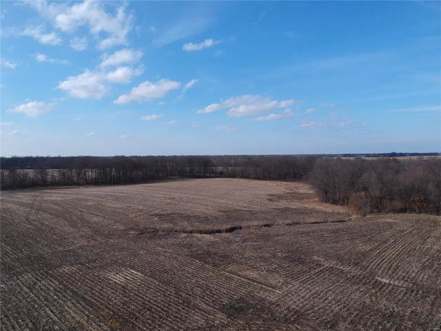 65 Sunbeam Road, New Florence, MO 63363 (#19077561) :: Parson Realty Group