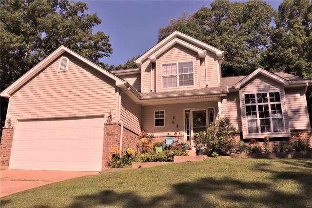 9953 Lincoln Drive, Hillsboro, MO 63050 (#19079137) :: Holden Realty Group - RE/MAX Preferred