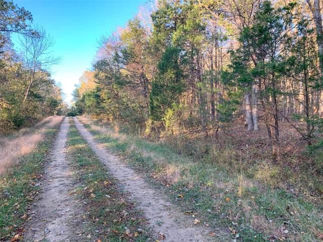 1 Quail Drive, Bonne Terre, MO 63628 (#19079477) :: Realty Executives, Fort Leonard Wood LLC