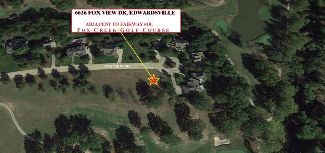 6626 Fox View Drive, Edwardsville, IL 62025 (#19079662) :: RE/MAX Professional Realty