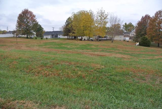0 Lot 17 Circle Drive, Saint Mary, MO 63673 (#19082420) :: Parson Realty Group