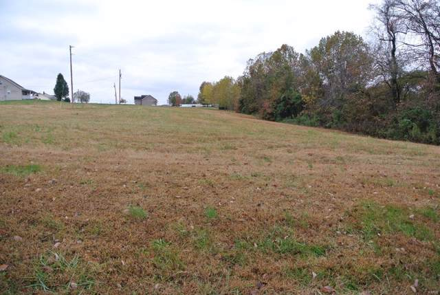 0 Lot 20 Highway H, Saint Mary, MO 63673 (#19082443) :: Parson Realty Group