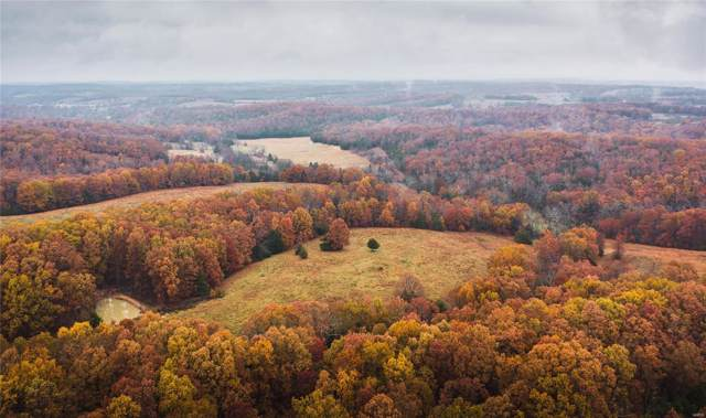 17551 Longview Road, Elk Creek, MO 65464 (#19083194) :: Matt Smith Real Estate Group