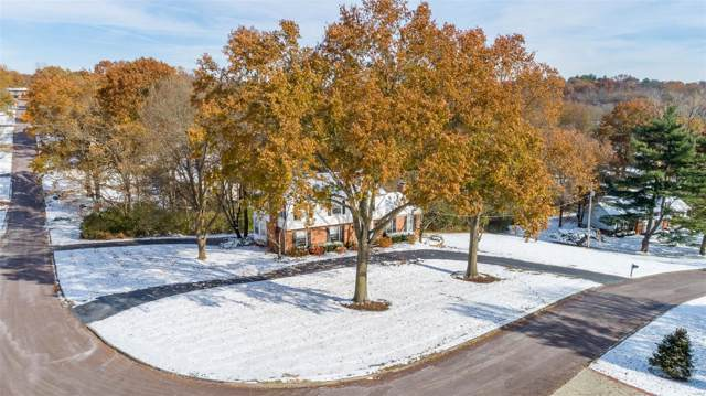 13349 Thornhill Drive, St Louis, MO 63131 (#19083219) :: Kelly Hager Group | TdD Premier Real Estate