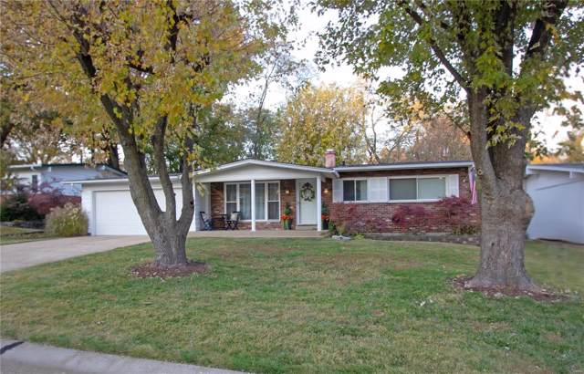 1227 Coronation Drive, St Louis, MO 63125 (#19083846) :: Kelly Hager Group   TdD Premier Real Estate