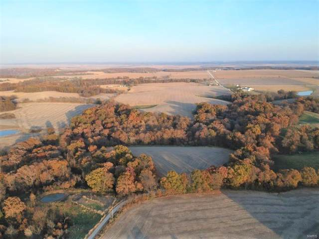 0 N 300, Pearl, IL 62361 (#19083872) :: Clarity Street Realty