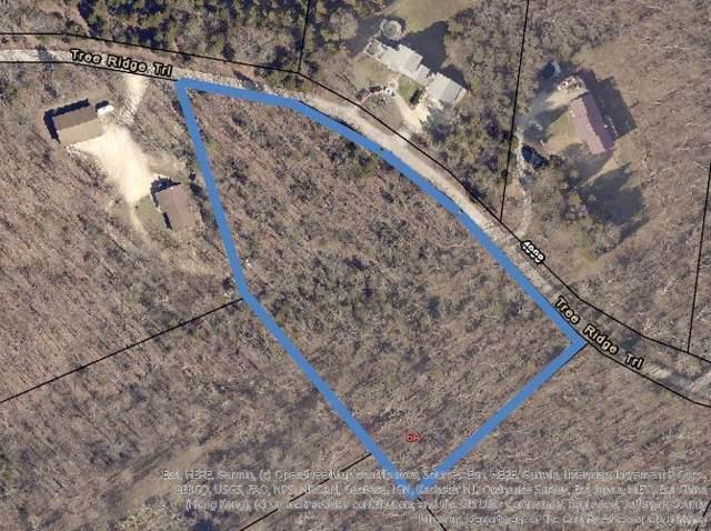 4900 Tree Ridge Trail, Hillsboro, MO 63050 (#19084001) :: St. Louis Finest Homes Realty Group