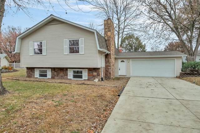 6 Hanging Tree Court, Saint Peters, MO 63376 (#19084015) :: Kelly Hager Group | TdD Premier Real Estate