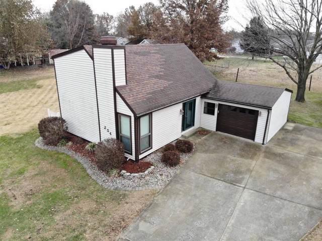 254 Shore Drive, Edwardsville, IL 62025 (#19084909) :: Hartmann Realtors Inc.