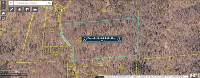 0 Stone Ridge Road, Potosi, MO 63664 (#19085015) :: Kelly Shaw Team