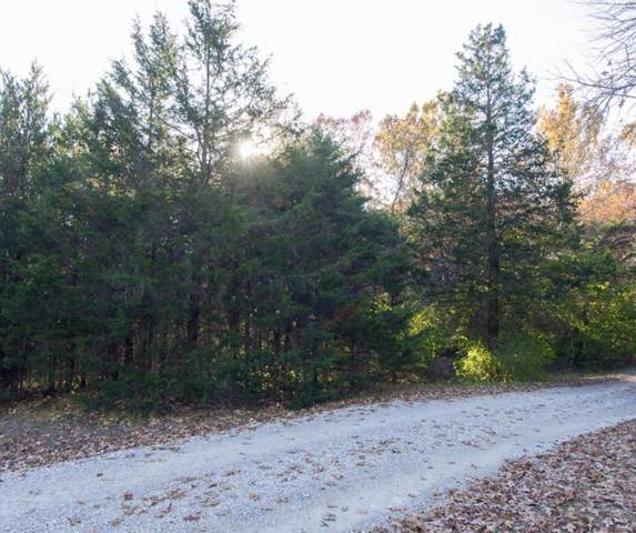 0 Glade Chapel Drive, Hillsboro, MO 63050 (#19085020) :: Kelly Shaw Team