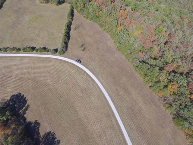 18 Lot Willow Wind Drive, De Soto, MO 63020 (#19085254) :: Clarity Street Realty