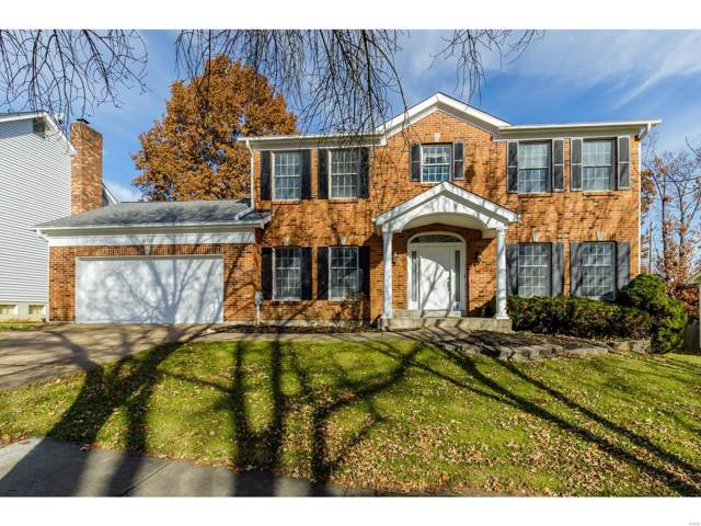 16437 Audubon Village Drive, Grover, MO 63040 (#19086179) :: Clarity Street Realty