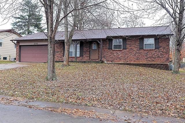230 Hillside, Farmington, MO 63640 (#19086624) :: Matt Smith Real Estate Group