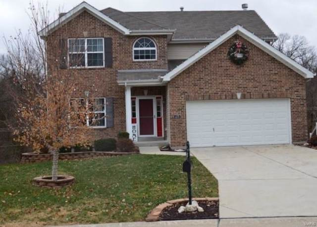 4375 Magoffin Trails Drive, St Louis, MO 63129 (#19086993) :: Kelly Hager Group | TdD Premier Real Estate