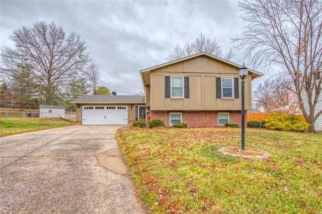 4 Jane Court, Saint Peters, MO 63376 (#19087118) :: RE/MAX Vision