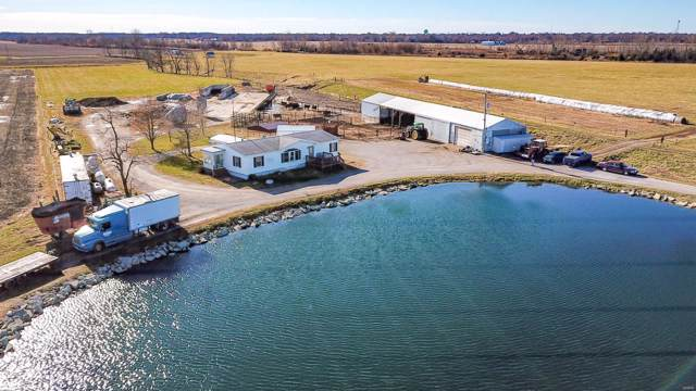 9517 Henderson Road, GILLESPIE, IL 62033 (#19087415) :: Kelly Hager Group | TdD Premier Real Estate