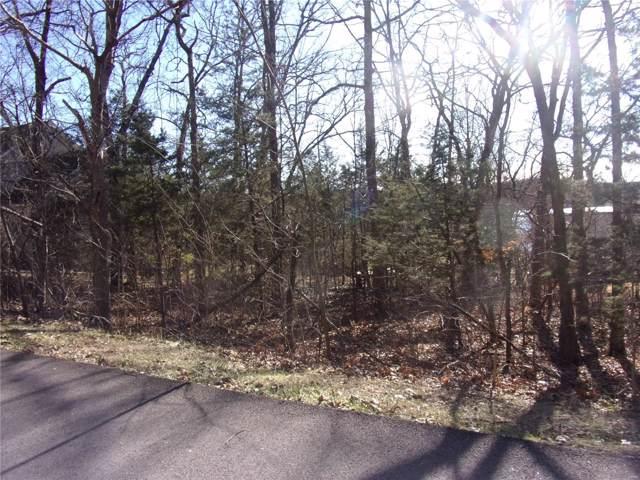 10305 Turkey Trail Drive, Hillsboro, MO 63050 (#19087637) :: RE/MAX Vision