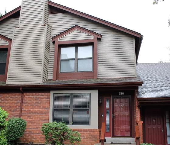 750 Finch Court C, Chesterfield, MO 63017 (#19087841) :: Peter Lu Team
