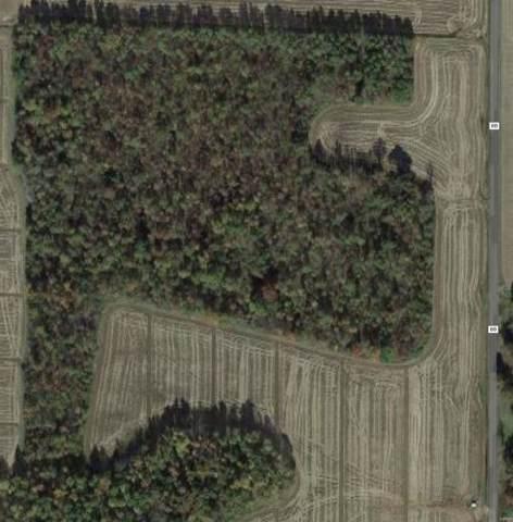 0 West Of Hwy Bb, Neelyville, MO 63954 (#19088114) :: Hartmann Realtors Inc.
