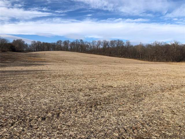 0 Hwy 79 & Deer Run Road, Elsberry, MO 63343 (#19088956) :: Matt Smith Real Estate Group